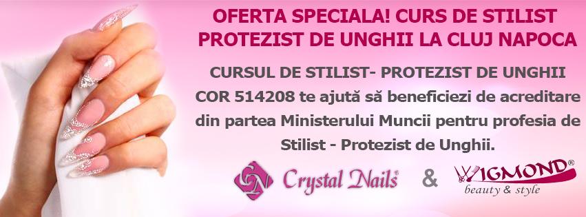 OFERTA SPECIALA! 10-13 IUNIE 2013 CURS DE STILIST- PROTEZIST DE UNGHII LA Cluj Napoca