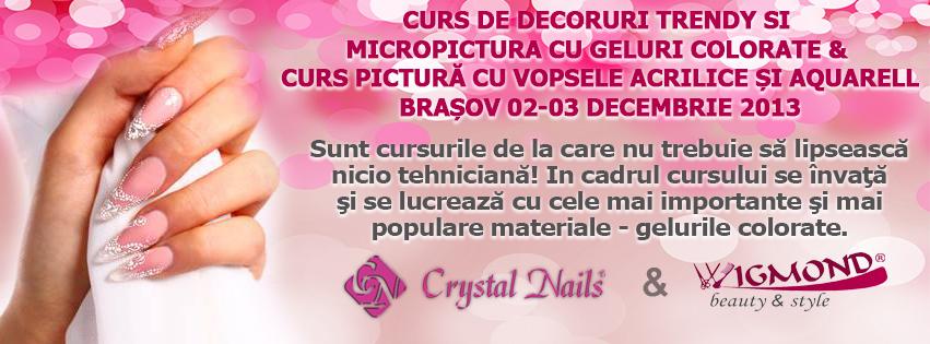 CURS DE DECORURI TRENDY SI MICROPICTURA CU GELURI COLORATE 02-03 decembrie 2013 BRASOV