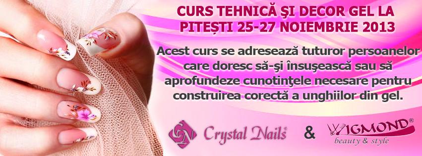 Banner Curs Tehnica si decor Gel 25-27 noiembrie 2013 Pitesti