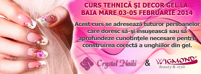 Banner Curs Tehnica si decor Gel 03-05 februarie 2014 Baia Mare