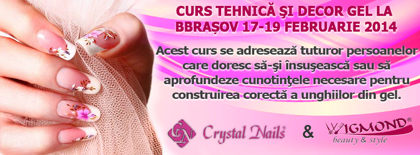 Banner Curs Tehnica si decor Gel Brasov 17-19 februarie 2014