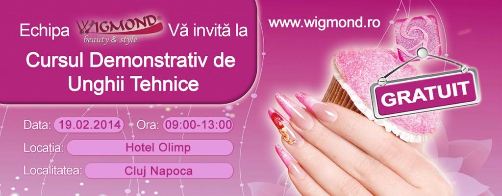 Seminnar Crystal Nails 2014 Cluj Napoca 19 februarie 2014