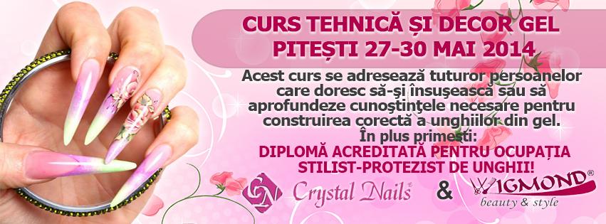 Curs Tehnica si decor Gel Pitesti 27-30 mai 2014