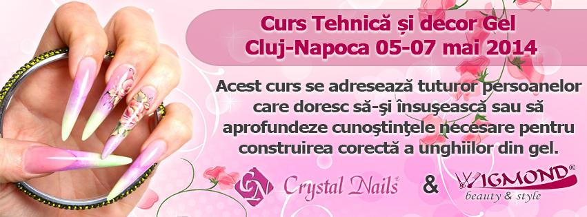 Curs Tehnica si decor Gel Cluj-Napoca 05-07 mai 2014