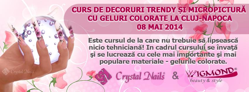 Curs de Decoruri Trendy si Micropictura cu Geluri Colorate la Cluj-Napoca 08 mai 2014
